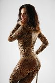 picture of catsuit  - Sexy woman is sneaking as a cat - JPG