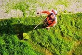 Young Worker Mowing Lawn With Grass Trimmer Outdoors On Sunny Day. Man Mowing The Grass, The Mower T poster