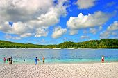 picture of mckenzie  - Lake McKenzie is one of the popular freshwater lake at Fraser Island Australia