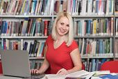 Happy Blonde Woman Working In The Library poster