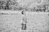 Little Helper In Garden. Boy Planting Flower In Field Digging Ground. Work At Farm. Mother Nature Co poster