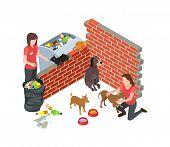Stray Animals Problem. Stray Dogs Cats Care. Isometric Vector Volunteers And Homeless Animals. Volun poster