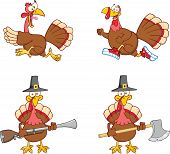 Turkey Birds Cartoon Characters 1. Collection Set
