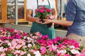 Woman Buying Pink Flowers