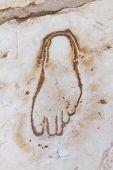 pic of brothel  - Footprint on Marble for advertisement of the Brothel in Ephesus Turkey  - JPG
