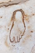 picture of brothel  - Footprint on Marble for advertisement of the Brothel in Ephesus Turkey  - JPG