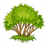 bush with green leaves. Rasterized illustration.