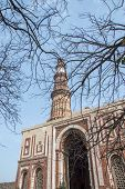pic of qutub minar  - Qutub minar and small building with tree and other branches - JPG