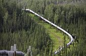 stock photo of pipeline  - A view of the Alaska oil pipeline in the wilderness heading up the mountain - JPG