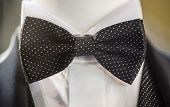 stock photo of ceremonial clothing  - Black papillon tie with white dots on man wedding dress - JPG