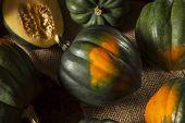 stock photo of acorn  - Raw Organic Green and Orange Acorn Squash  - JPG