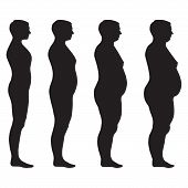 stock photo of body fat  - vector fat body - JPG