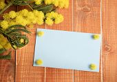 picture of mimosa  - Blue empty card with mimosa on wooden background - JPG