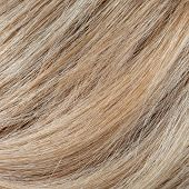 picture of hair streaks  - Wavy blonde woman hair background and texture - JPG