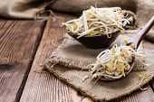 picture of soybean sprouts  - Bowl with Mungbean Sprouts on wooden background - JPG
