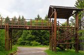 picture of italian alps  - A wooden bridge over a road along a trekking path in the Italian Alps - JPG