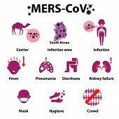 pic of respiratory  - MERS - JPG