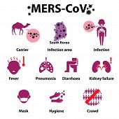 stock photo of sick kidney  - MERS - JPG