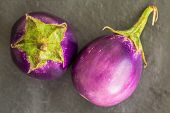 picture of aubergines  - Two Baby size aubergines eggplants on stone gray background top view - JPG