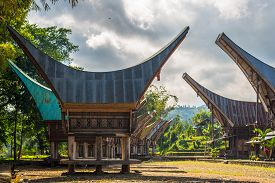 pic of barn house  - Row of traditional houses and rice barns facing each other in a tipical traditional village of Tana Toraja South Sulawesi Indonesia - JPG