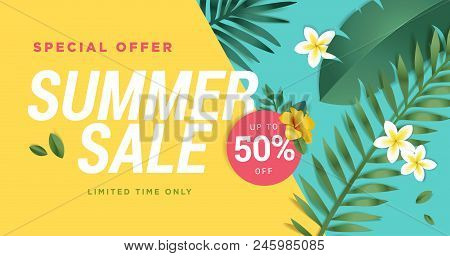 Summer Sale Vector Illustration For