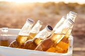 Close up of beer bottles cooling in a fridge at the beach poster