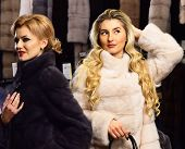 Women In Fur Coats With Bags In Fur Shop. Girls With Mysterious Faces In Black And White Fur Coats H poster