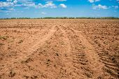 Plowed Field Prepared For Sowing. Landscape With Agricultural Land. Arable Land. Natural Background. poster