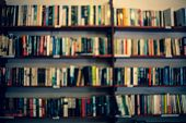 Shelves With Books In A Blurred Background. Abstract Colorful Blurred Background With Books. Learnin poster