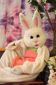 image of buck teeth  - easter bunny with a background spring look - JPG