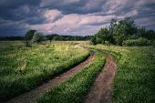 Winding Country Road In A Cloudy Evening. The Road Winds Through A Field With Green Grass Under A Cl poster