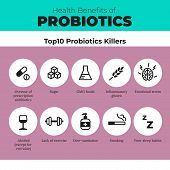 Probiotics Health Benefits Vector Infographic. Flat Stroke Illustration About Nutrient Rich Food And poster