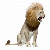 North America Lion 3d Illustration - The American Lion Lived As A Megafauna Predator During The Plei poster