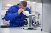 Male Laboratory Assistant Looking Through A Microscope. Research In The Laboratory Under The Microsc poster