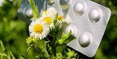 Summer Bloom Allergy. Irritation Of Mucous From Flowering In Summer. Allergy Pills. poster