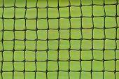 pic of deuce  - Tennis net on a green grass court - JPG