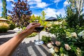 A Glass Of Red Wine Drinking And Tasting Outdoor In Winery Courtyard, Hand Close Up And Selective Fo poster