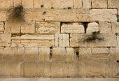 stock photo of tora  - the Western Wall in the old city of jerusalem - JPG