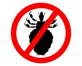 pic of lice  - Prohibition sign for lice on white background - JPG