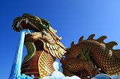 picture of annal  - God dragon in suphanburi province of thailand - JPG