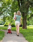 pic of stroll  - Full length rear view of mid adult woman with children strolling in park - JPG