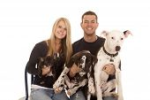 picture of puppies mother dog  - a couple taking a family photo with their dogs - JPG