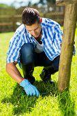 stock photo of grass-cutter  - young man trimming grass at home garden - JPG