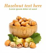 foto of cobnuts  - Ripe hazelnuts in wooden pot on white background - JPG