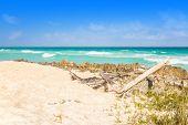 image of playa del carmen  - Carribean sea scenery in Playacar  - JPG