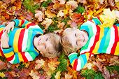 image of kiddie  - Two little kid boys lying in autumn leaves in colorful clothing - JPG