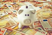 image of coin bank  - Piggy Coin Bank standing on fifty Euro banknotes pile as home budget theme illustrative image - JPG