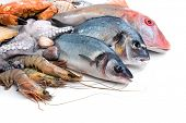 pic of crustacean  - Fresh catch of fish and other seafood - JPG