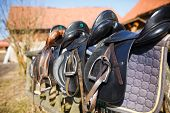 picture of girth  - A saddles laying on the rustic fence in warm sunlight - JPG