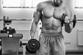 pic of exercise  - Dumbbell exercises - JPG